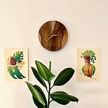 Grafika - Pilea punk - Print | Botanická ilustrácia - 11766927_