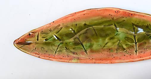 misa lososovo zelená lodička
