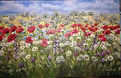 Obrazy - Pestrosť lučných kvetov  - 11811478_
