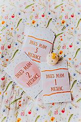 Detské doplnky - Míľnikové kartičky - Princess - 11814147_