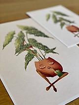 Grafika - Smädná begónia - Print | Botanická ilustrácia - 11812526_