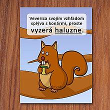 Grafika - Haluzná veverica - grafika - 11834332_