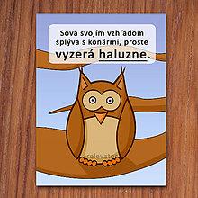 Grafika - Haluzná sova - grafika - 11834343_