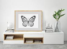 Motýľ z divokých lúk
