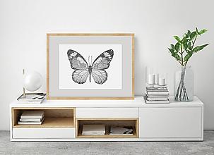 Grafika - Motýľ z divokých lúk - 11847211_