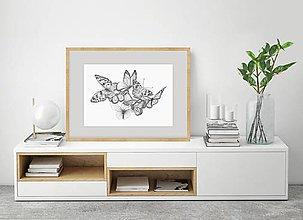 Grafika - Motýle - 11847726_