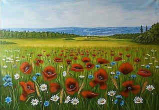 Obrazy - Krajina lúčných kvetov - 11849612_