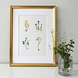 Kresby - Jarné kvetinky 1 - 11850634_