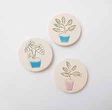 Odznaky/Brošne - brošňa rastlina v kochlíku - 11856324_