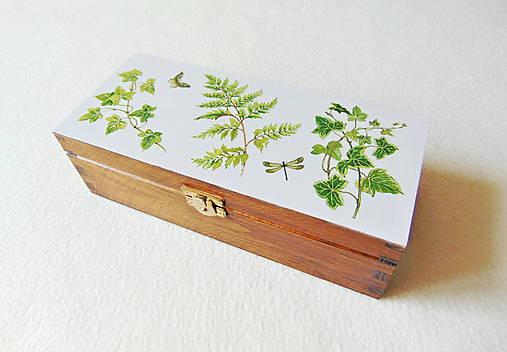 Drevená krabička Z lesa