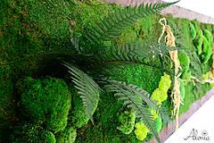 Obrazy - Machový obraz zo stabilizovaných rastlín na stenu - 11901986_