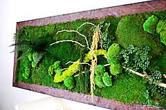 Obrazy - Machový obraz zo stabilizovaných rastlín na stenu - 11901987_