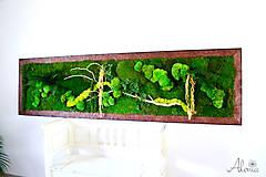 Obrazy - Machový obraz zo stabilizovaných rastlín na stenu - 11901990_
