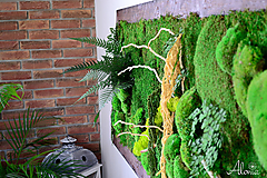 Obrazy - Machový obraz zo stabilizovaných rastlín na stenu - 11901991_