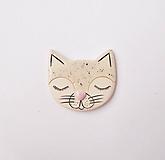 Odznaky/Brošne - brošňa mačka spí - 11903011_