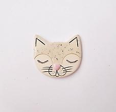 Brošne - Mačka sní brošňa - 11903011_