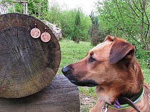 Náušnice - Drevené náušnice XXIII - 11921033_