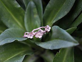 Prstene - Vetvičkový s lúčnymi kvietkami zlatý - 11931967_