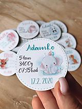 Detské doplnky - Magnetky na pamiatku s údajmi o narodení sloník - 11936024_