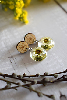 Náušnice - Náušnice Chryzantéma kruhy 2868 A CHO - 11942428_