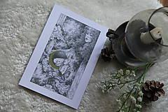 Kresby - Víla na krídlach nočných motýľov Art Print - 11945084_