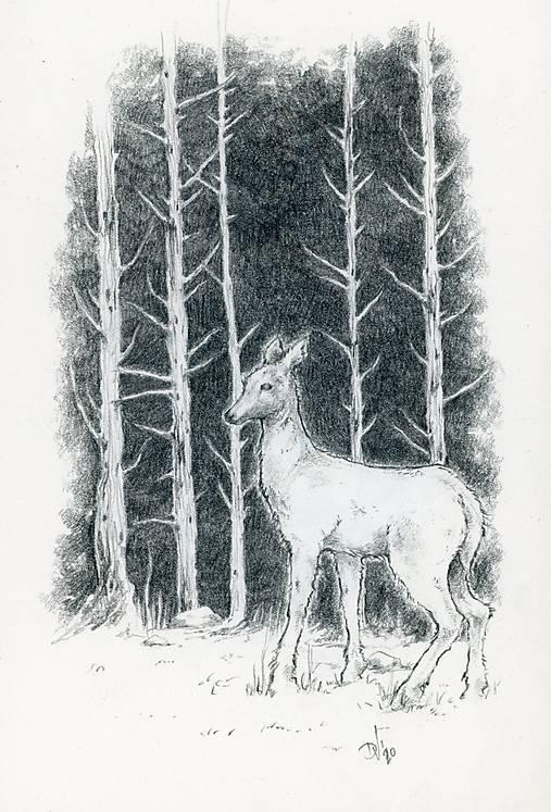 Srnka medzi kmeňmi stromov Art Print