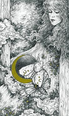 Kresby - Víla na krídlach nočných motýľov Art Print - 11945082_