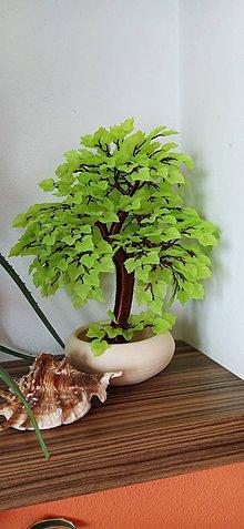 Dekorácie - Žlto-zeleny bonsaj - 11951237_