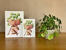 Grafika - Dobré čítanie - Print | Botanická ilustrácia - 11962878_