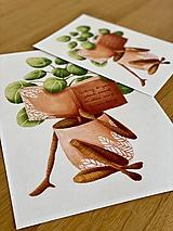 Grafika - Dobré čítanie - Print | Botanická ilustrácia - 11962879_