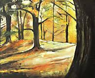 Obrazy - v lese - 11967764_