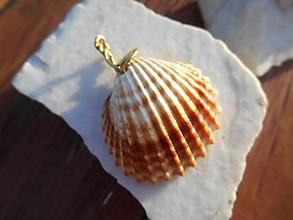 Náhrdelníky - pri mori - mušla- - 11971113_
