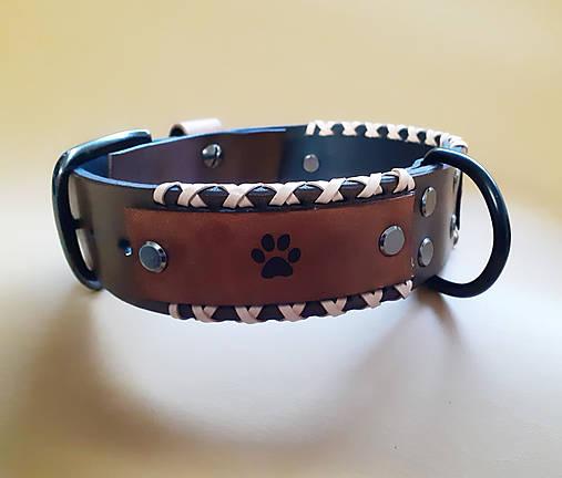Obojok pre psíka šitý s remienkami