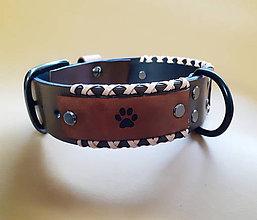 Pre zvieratká - Obojok pre psíka šitý s remienkami - 11989587_