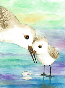 Obrázky - Vtáčia rodinka - 11999070_