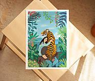Grafika - Tygr - umělecký tisk, A4 - 12010586_