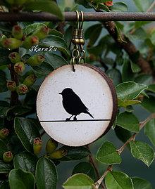 Náušnice - Vtáčiky - 12009849_