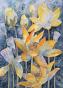 Obrazy - lotosový kvet - 12024721_