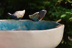 Socha - pítko, napájadlo pre vtáčikov, viď. doplnkové foto - 12048545_
