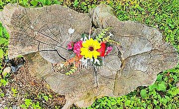 Ozdoby do vlasov - Pestrofarebný hrebeň z poľných kvetov - 12045205_