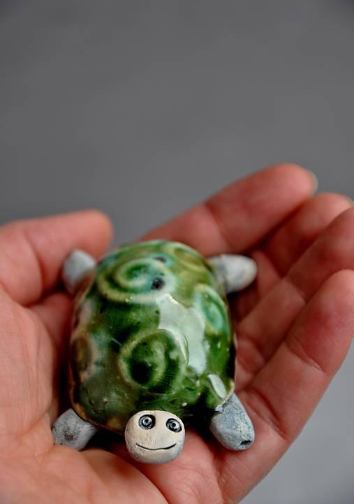 korytnačka zelená