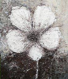 Obrazy - Flower - 12059640_