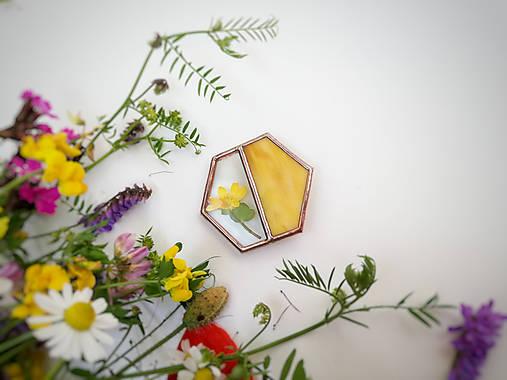 Odznaky/Brošne - Brošňa Hexagon (s rastlinkami) (Žltá) - 12063553_