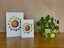 Grafika - Hello plantshine! - Print | Botanická ilustrácia - 12067695_