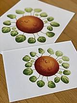Grafika - Hello plantshine! - Print | Botanická ilustrácia - 12067697_