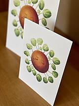 Grafika - Hello plantshine! - Print | Botanická ilustrácia - 12067698_