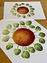 Grafika - Hello plantshine! - Print | Botanická ilustrácia - 12067699_