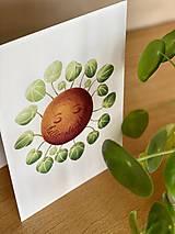 Grafika - Hello plantshine! - Print | Botanická ilustrácia - 12067700_