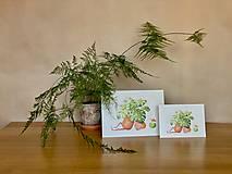 Grafika - Letná pohodička - Print   Botanická ilustrácia - 12067774_