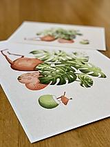 Grafika - Letná pohodička - Print   Botanická ilustrácia - 12067777_